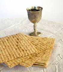 Pesach meal 1