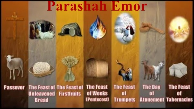 Parashah Emor Feasts.jpg