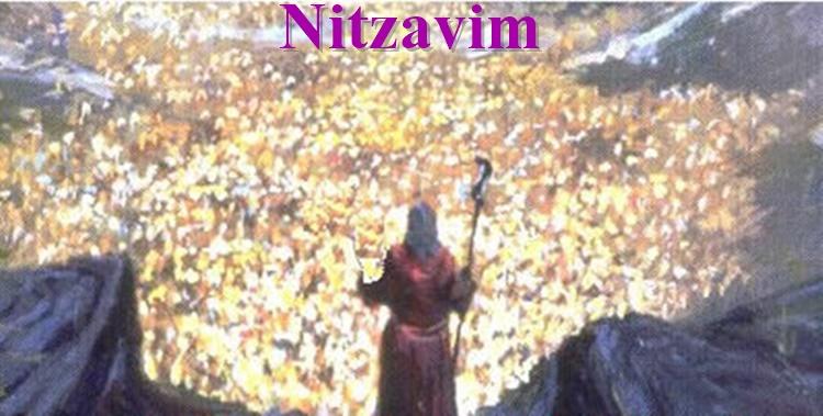 nitzavim-1