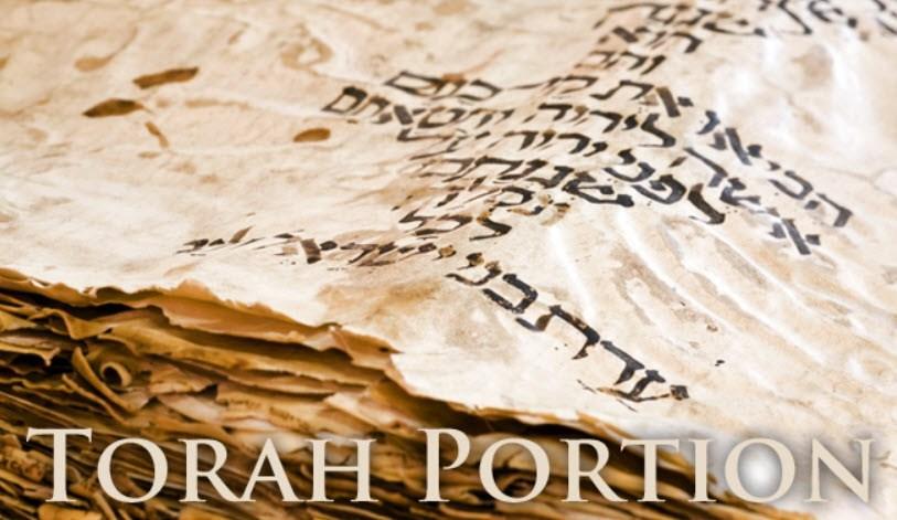 Torah-portion3-1.jpg